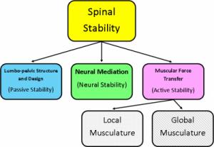 Panjabi Model of Stability